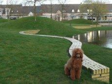 Fotky z Belgie - Pictures from Belgium