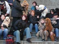 Královská cesta 12.2007