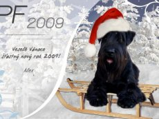 Přáníčka 2008 a starší - Wishes 2008 and before
